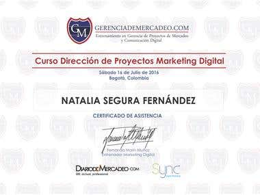 CERTIFICADO PLAN DE MARKETING DIGITAL