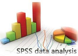 Statistics & Statistical Analysis, including SPSS Analysis