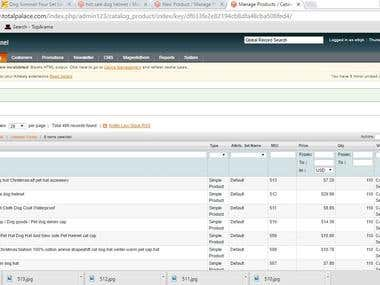 Data Entry on Magento Site