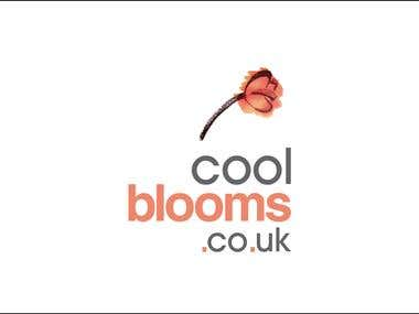 Cool Bloom.co.uk