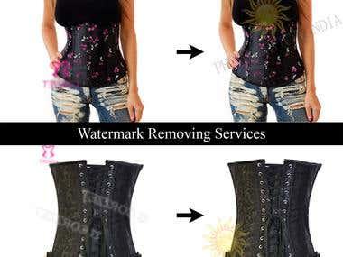 Watermark /Logo Removing