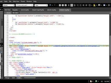 Google Adsense code input
