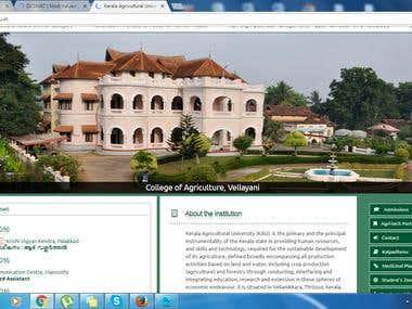 University webite