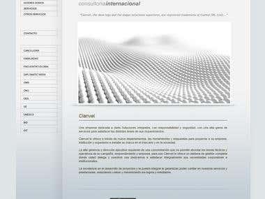 Web design for Embassy