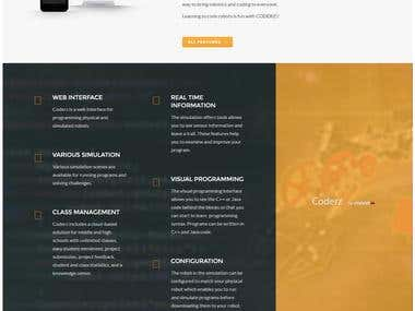 Wordpress webiste Design