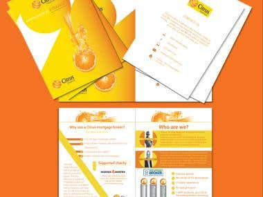 Flyers and Brochures and letterhead.
