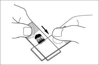 Microscopic slide prep 2