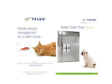 Telus - Brochure Design