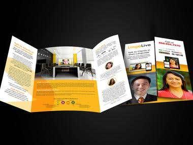 Brochure Design 8
