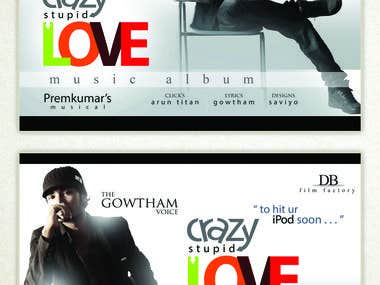 Crazy Stupid Love - Music Album Branding