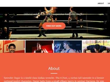 Website Design For Wrestler