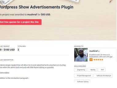 Wordpress Plugin Developed - Ads Management