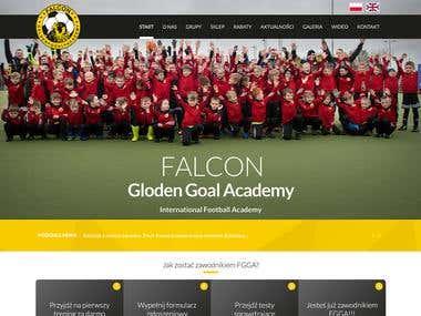 Falcon Golden Goal Academy