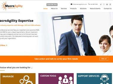 Website for MacroAgility Inc