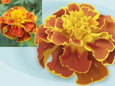 Vectorisation: Raster to Vector (Flowers)