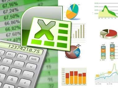 MS Excel Services