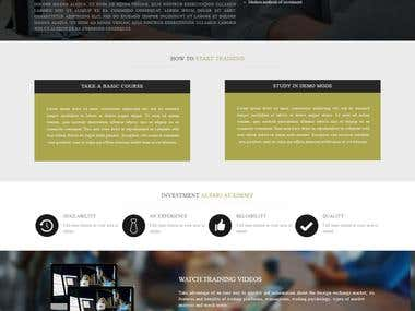landing page design of alpari