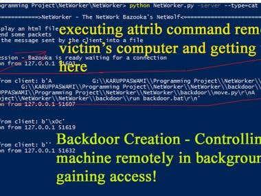 Offesnsive Programming (Hacking/Pen-Testing)