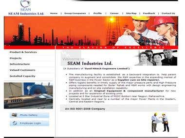 Web Designing (www.seamlimited.com)