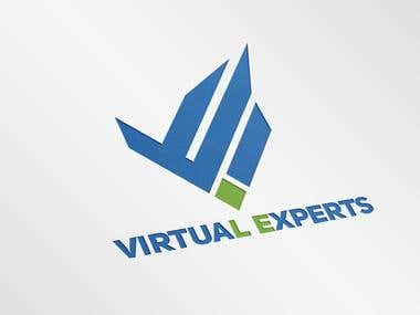 virtual experts