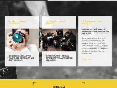 Paladix web design (Photography blog website)