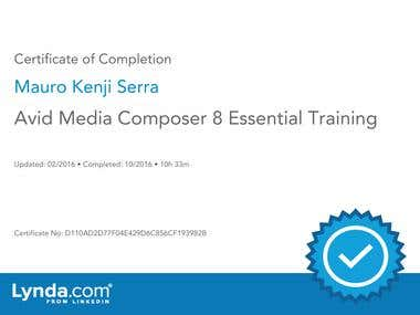 Avid Media Composer 8 Essential Training Certificate