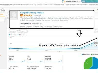 Organic traffic result