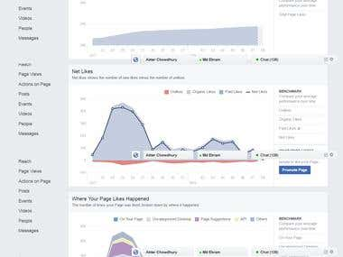 Facebook Marketing and Analytics