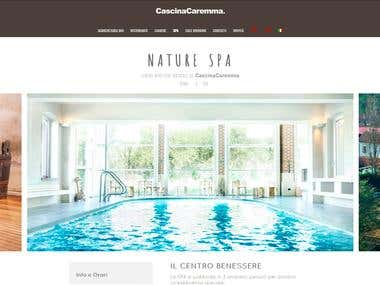 Website SPA Wordpress