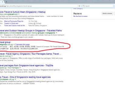 Singapore Travel Group - Ranking in Google Singapore top