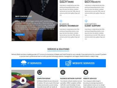 "Landing page design ""Network Minds"""