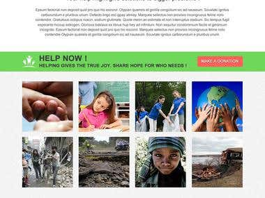 SEESa Foundation NGO Website