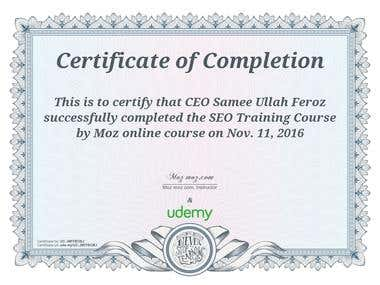 Moz Certified SEO Consultant