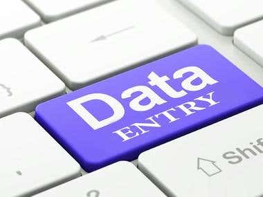 Data Entry and Web Research Services