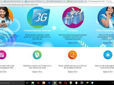 Telecommunication website design