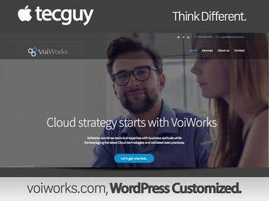 Custom WordPress Customized