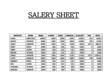 Sellry Sheet with data entry on ms Excel