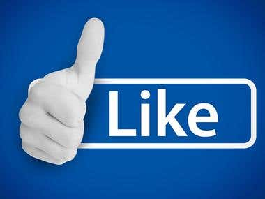 I will give you Facebook fan Page Likes