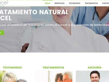 Web Salud wordpress