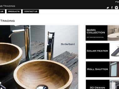 Website Design/WordPress