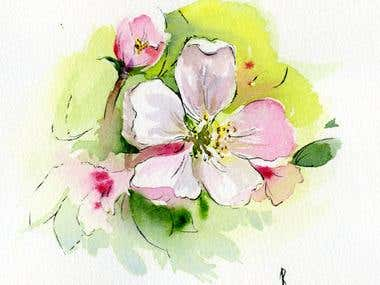 Water Color flower paintings