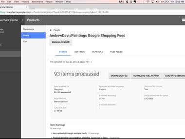 Uploaded all 93 products into Google Shopping successfully