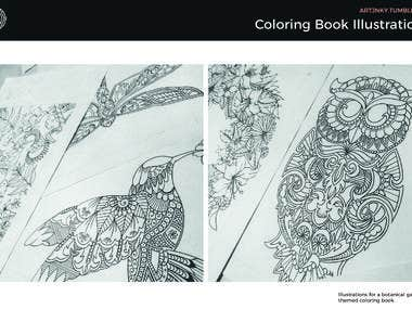 Coloring Book Illustrations