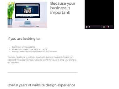 No DIY Websites Company Website