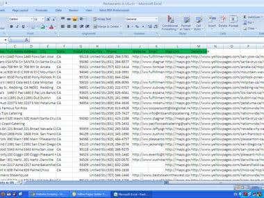 USA Restaurant Database sample