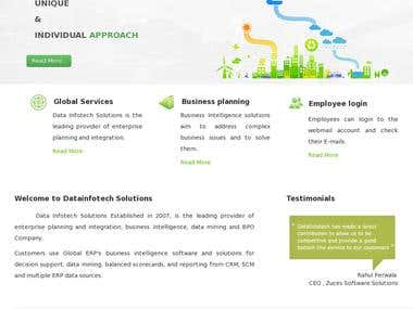DATA INFOTECH Corporate Website