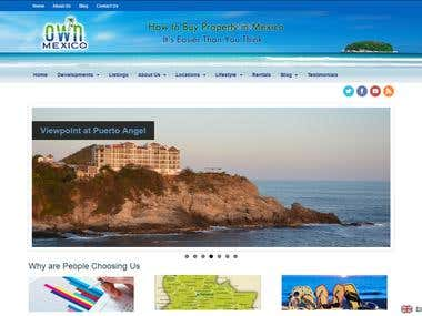 Own Mexico Website - WordPress