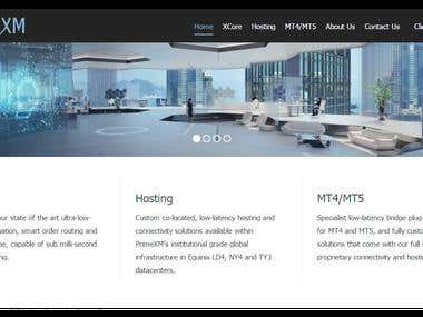WordPress Website for PrimeXM