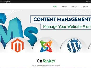 Wordpress Website Design & Template Customization