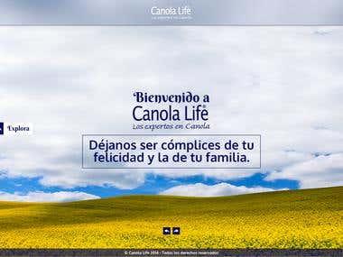 Web page concept Canola